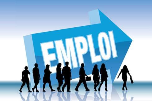 Le marché de l'emploi (chez les développeurs) - Fabien Fernandez    Freelance Web Développeur